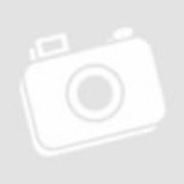Vitaking Spirulina alga tabletta 200db